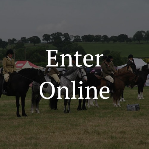Arthington-Show-Equine-Classes