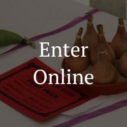 Enter-General-Online